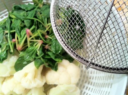 karnibahar salatasi3